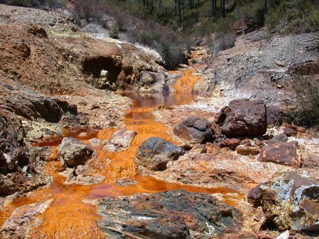 Coal Mines.jpg