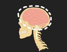Figure 1: The discovery of reduced brain activity as an indicator of depression helps piece together part of the explanation as to why depression may develop.
