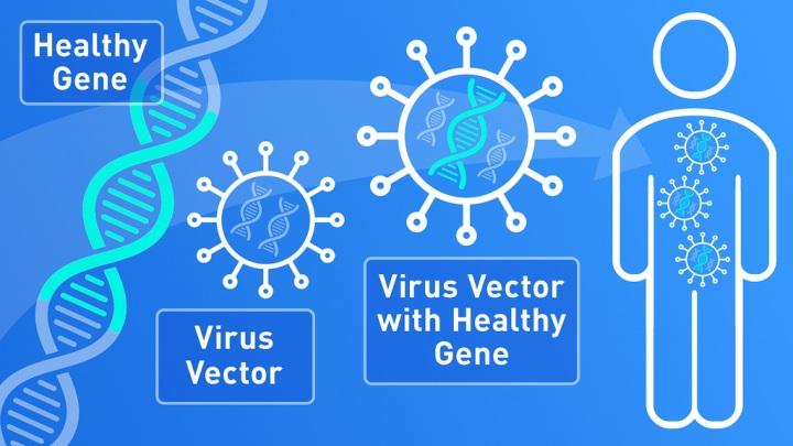 Gene_Therapy.jpg