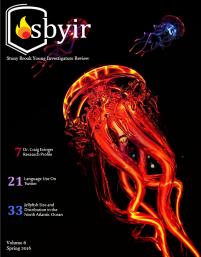 SBYIR -
